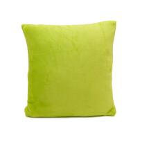 Vankúšik Mikroplyš New zelená, 40 x 40 cm