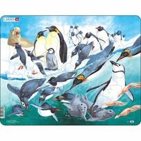 Larsen Puzzle Pingwiny, 50 części