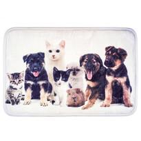 Predložka Psy a mačky, 40 x 60 cm