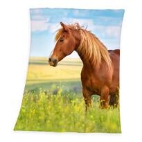 Koc Horse Freedom, 130 x 160 cm