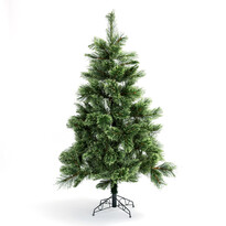 Vánoční stromeček borovice kašmír 180 cm
