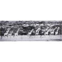 Obraz Žirafa 30 x 90 cm