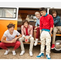 Fototapeta One direction 1, 315 x 232 cm