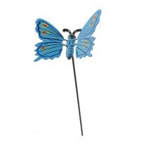 Dekorácia motýlik, modrá