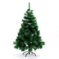 Vianočný stromček borovica 150 cm