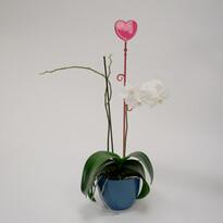 Tyčka k orchideji srdce, červená, 2 ks