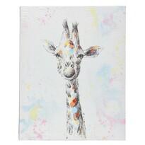 Obraz Colours Giraffe, 40 x 50 cm