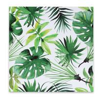 Tablou pe pânză Jungle, 50 x 50 cm