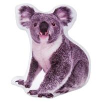 3D poduszka Koala, 30 x 40 cm