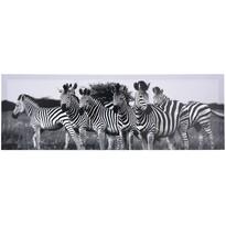 Zebra falikép 30 x 90 cm