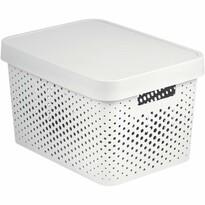 Curver 04753-N23 úložný box s víkem, 36 x 14 x 27 cm