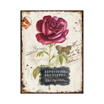 Obraz na plátně Rozkvetlá růže