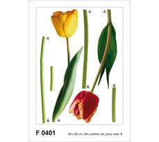 Samolepiaca dekorácia Tulipány