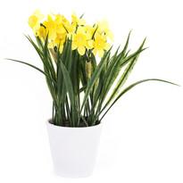 Sztuczny kwiat narcyz żółty