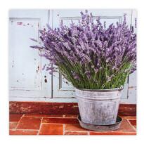 Obraz na plátne Muret Lavender 58 x 58 cm
