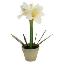 Umělá Vánoční Klívie v květináči bílá, 30 cm