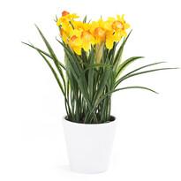 Umělá květina narcis tmavě žlutá