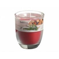 Svíčka ve skle Zimní sen, 110 g