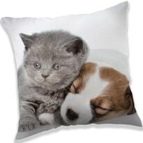 Poduszka Puppy and Kitten, 40 x 40 cm