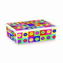 KIS Dekorační úložný box C-Box Style Artists L, 27 l