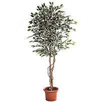 Umelý strom ficus hawaii 170 cm