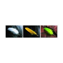 Trzyczęściowy obraz Feather