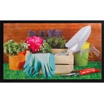 Vnitřní rohožka Image 585/002, 45 x 75 cm