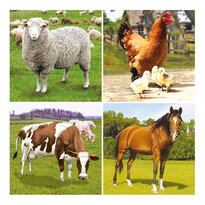 Bino Puzzle Farma, 36 dílků