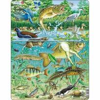 Puzzle Larsen Animale pe lac, 50 piese