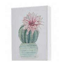 Obraz Kaktus Rebucie, 13 x 18 cm