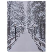 Obraz LED na płótnie Winter, 40 x 30 cm