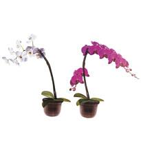 Decorațiune autocolantă Orchidee