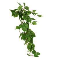 Umělá kvetina tradeskancia 72 cm
