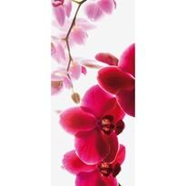 Fototapeta orchidea 95 x 210 cm