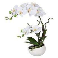 Sztuczna Orchidea w doniczce biały, 42 cm