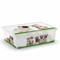 KIS Dekorační úložný box C-Box Puppy & Kitten L, 27 l