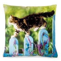 Poszewka na poduszkę Kot na płocie, 40 x 40 cm