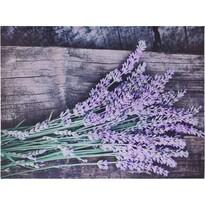 Obraz na plátne Nantes Lavender, 78 x 58,5 cm