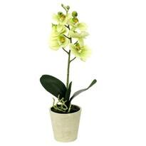 Umělá květina orchidea zelená, 39,5 cm