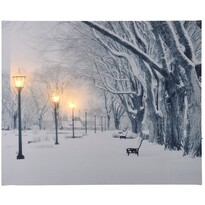 LED Obraz na plátně Lurdy, 50 x 40 cm
