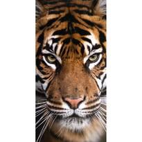 Osuška Tygr, 70 x 140 cm