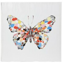 Obraz Colours Butterfly, 50 x 50 cm