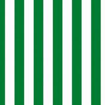 Tapeta Korsa 70 x 100 cm, zelená