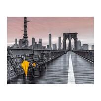 Tablou pe pânză Bridge