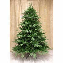 Jedle Frasier zelená, 210 cm