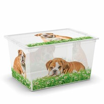 KIS Dekorační úložný box C-Box Puppy & Kitten XL, 50 l
