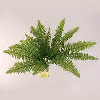 Műnövény páfrány 40 cm átmérőjű