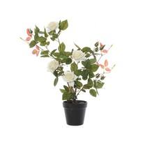 Umelý Ružový ker v kvetináči biela, 50 cm