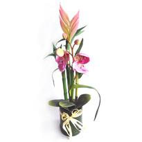 Umelá kvetina aranžmán orchidey a bambusu