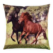 Povlak na polštářek Koně, 45 x 45 cm